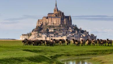 Photo of Аббатство Мон-Сен-Мишель: остров-крепость