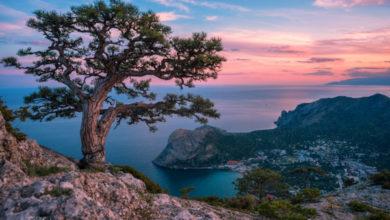 Photo of В 2020 году Крым принял более 6.4 млн туристов