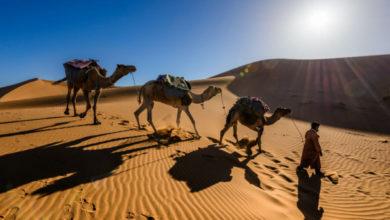 Photo of Приключения участника «Кудаблин?Тудаблин!» в Марокко. Часть II